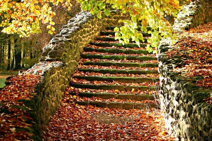 autumn-1797385_1280